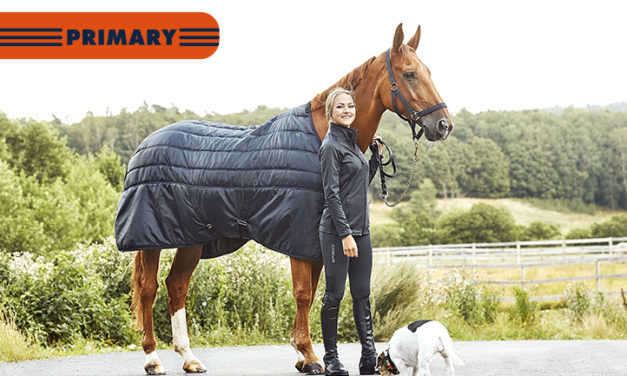 Primary Rugs, -your everyday must haves