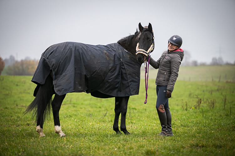Kingsland Rugs – tested by readers/ Ehorses